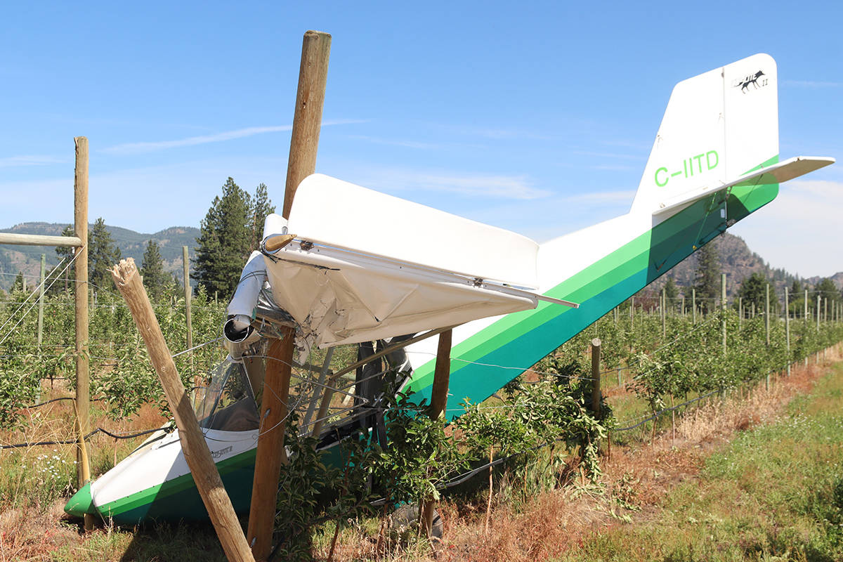 The pilot of this single-engine propeller plane was unhurt after crash-landing in a Como Road orchard Friday, June 18. Photo: Laurie Tritschler